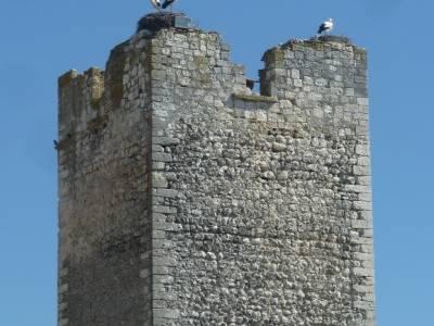 Castillos de Cuellar y Coca - Arte Mudéjar;jerte cerezos en flor viajes febrero foro senderismo mad